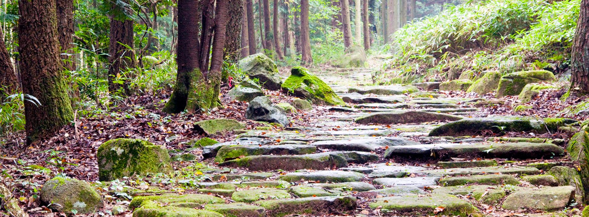 観光タクシー,大湫宿の古い町並みと琵琶峠散策コース,平和コーポレーション株式会社